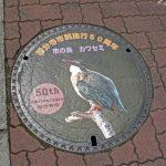 かわせみマンホール蓋(国分寺市役所前)