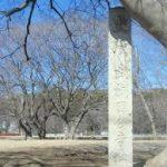 国分寺跡150721